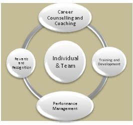 Individual-_-Team-Level-Services